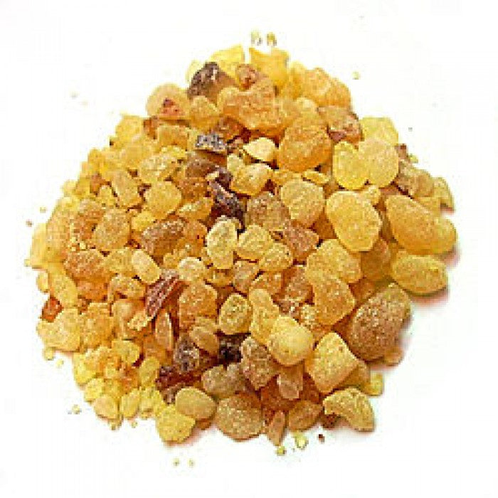 Frankincense Resin - Wild Crafted