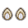 Asmitta Jewellery Gold Earring Zinc Drops Danglers  -ED555