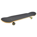 "31"" Skateboards- COMBS"