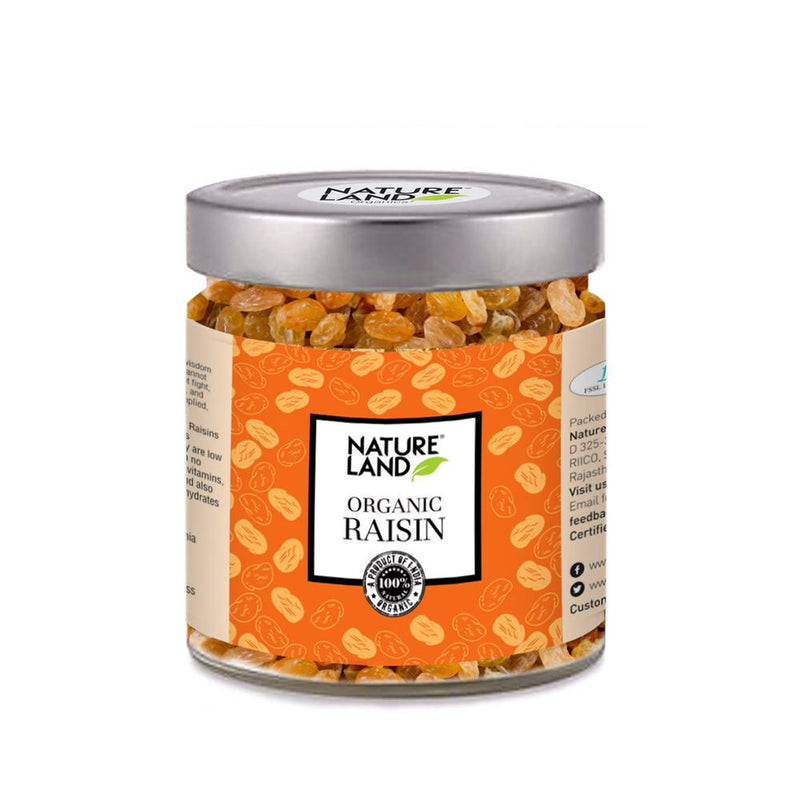 Natureland Organics Raisins 250 Gm - sai-organics-pte-ltd