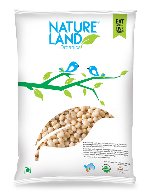Natureland Organics Urad Whole White 500 Gm - sai-organics-pte-ltd