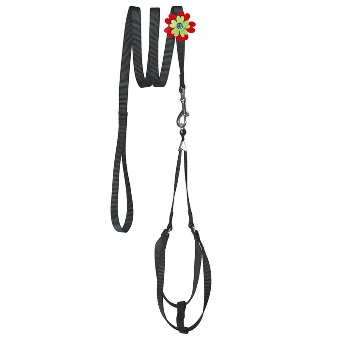 Step-In Nylon Harness + Optional Flower Leash