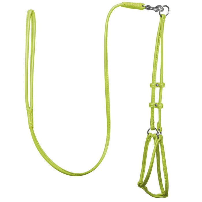 Soft Leather Round Step-In Harness + Round Lead