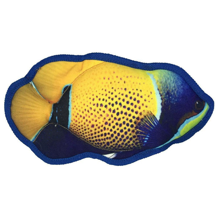 "10"" Tropical Damselfish Dog Fish Toy"