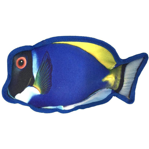 "10"" Tropical Blue Tang Dog Fish Toy"