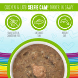 Weruva BFF Oh My Gravy Selfie Cam Grain Free Chicken and Lamb in Gravy Canned Cat Food