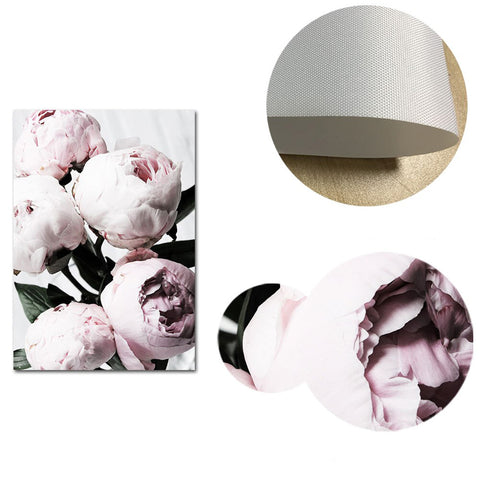 Pink Peony Canvas Poster