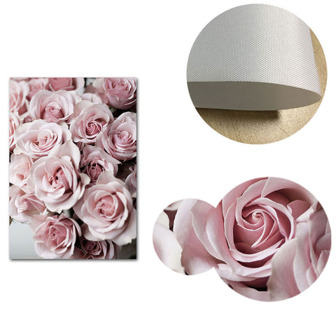 Amor Pink Roses and Feathers Canvas Wall Art