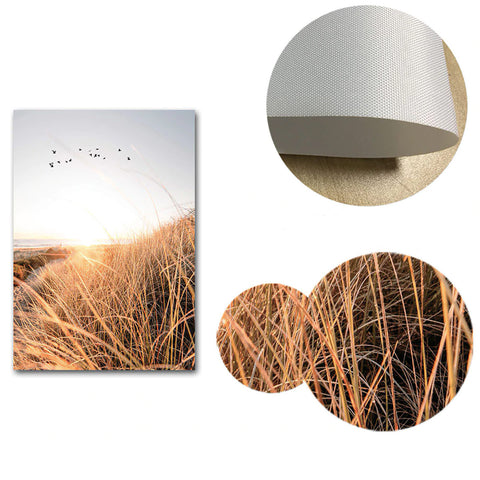 Sunset Field Canvas Poster