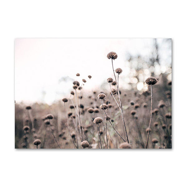Dry Meadow Scandinavian Canvas Posters