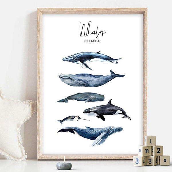 Whales and Sharks Kids Canvas Posters