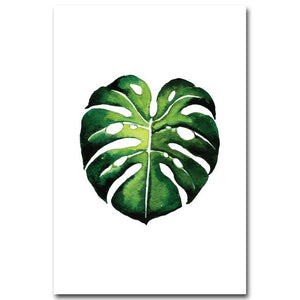 Tropical Plant Leaves