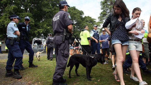 Sniffer dogs and police patrol a festival in the crackdown on party drugs