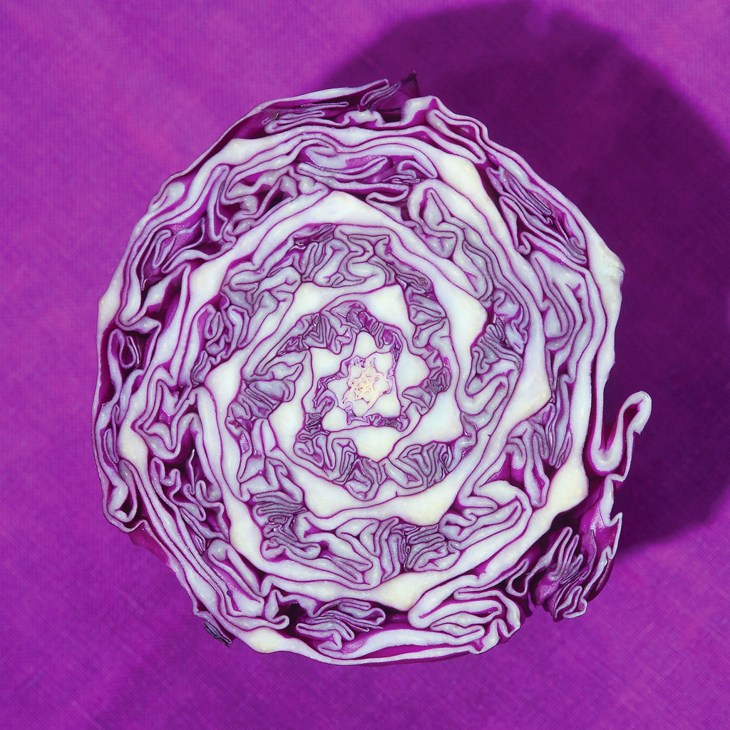 Ripe, Purple Cabbage