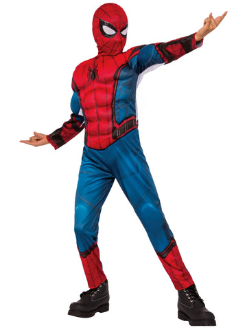 Spiderman Fancy Dress Costume and Mask