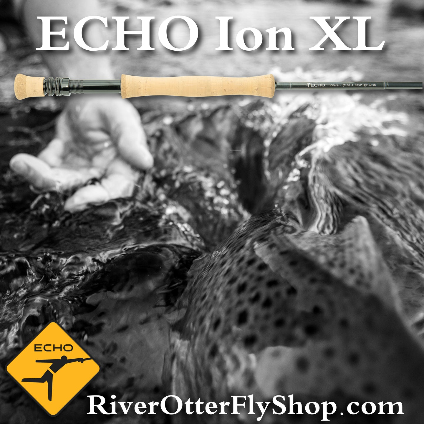 Echo Ion XL 10wt saltwater fly rod sale