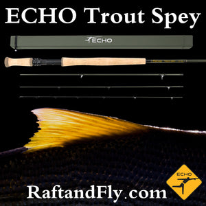 ECHO Trout Spey 3wt sale