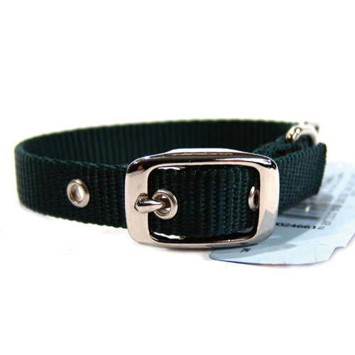 Single Thick Nylon Dog Collar (Size 5/8 X 14 In. Color Hunter Green)