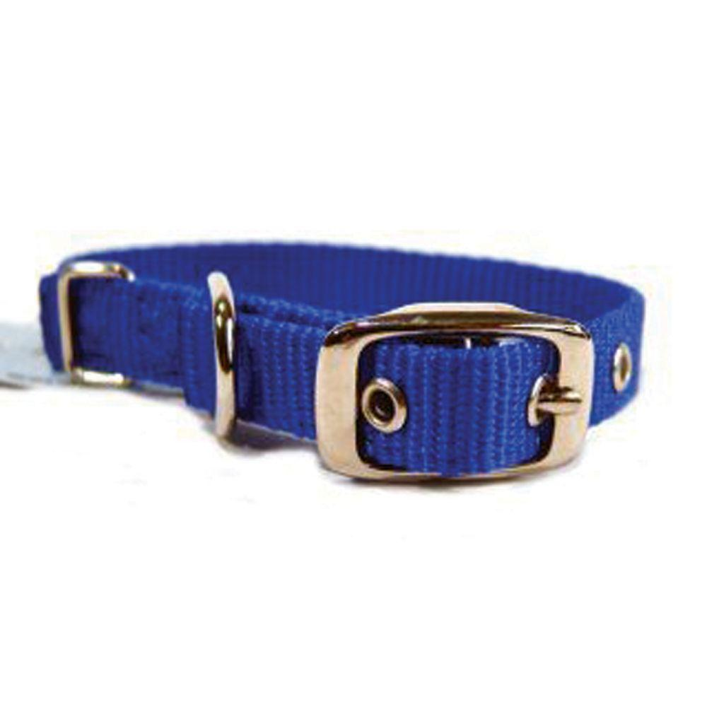 Single Thick Nylon Dog Collar (Size 5/8 X 14 In. Blue)