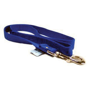 Single Thick Nylon Lead (Size 1 In X 4 Ft. Blue)
