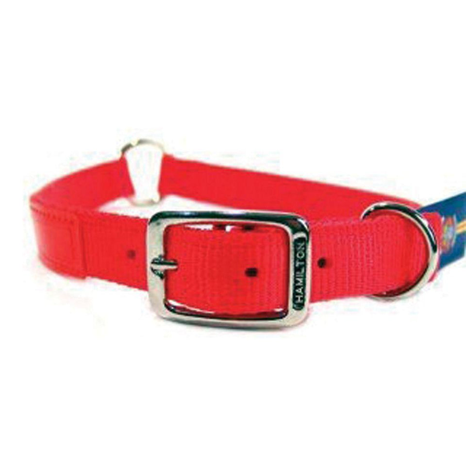 Safe-rite Dog Collar With Tape (Size 1x28 In. Orange)