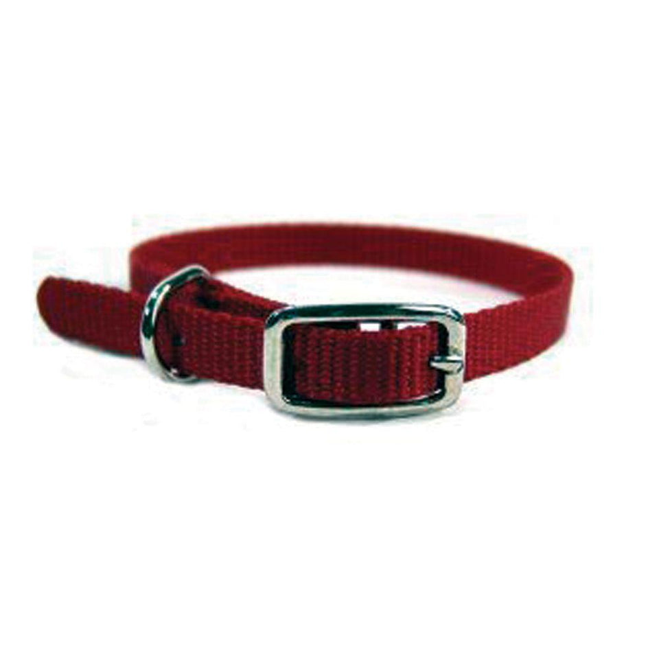 Single Thick Nylon Dog Collar (Size 3/8 X 12 In. Red.)