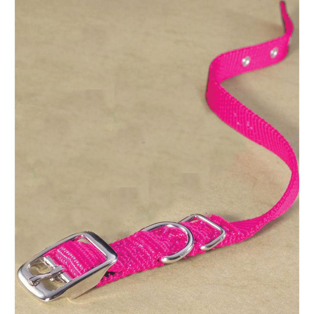 Single Thick Nylon Dog Collar (Size 5/8 X 14 In.)
