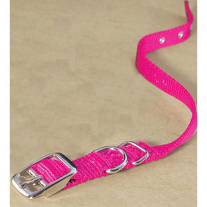 Single Thick Nylon Dog Collar (Size 5/8 X 16 In. Color Hot Pink)