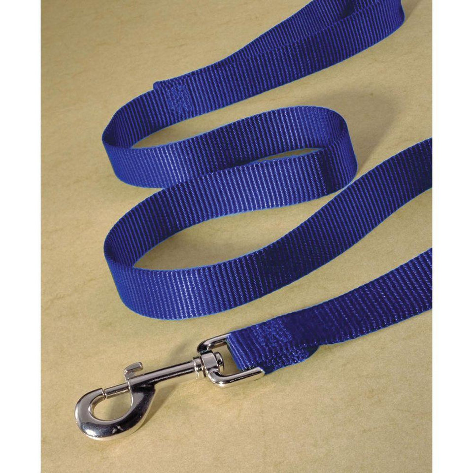 Single Thick Nylon Lead (Size 3/4 In X 6 Ft. Blue)