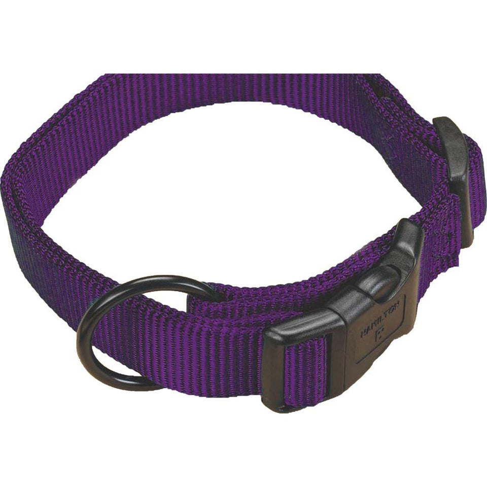 Adjustable Dog Collar 46 - 65cm