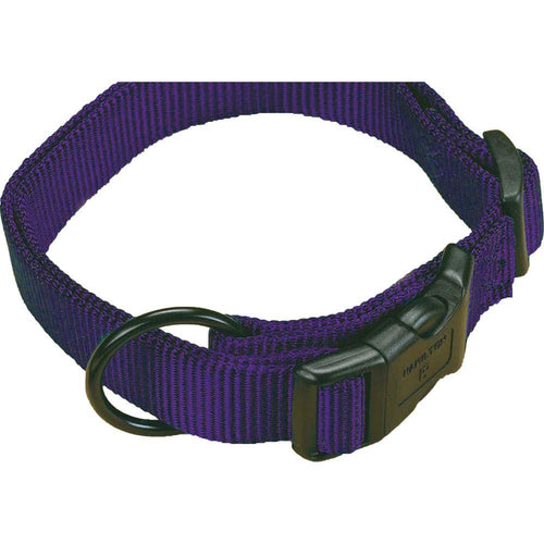 Adjustable Dog Collar (Size 1 X 18-26 In. Color Hot Purple)