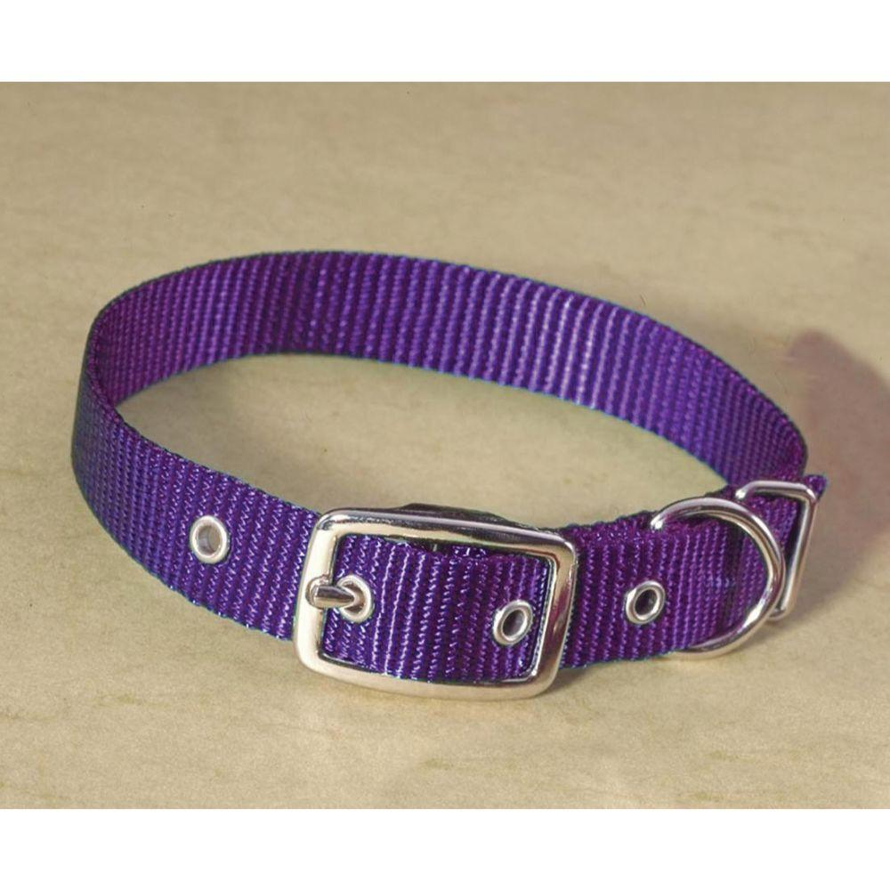 Single Thick Nylon Dog Collar (Size 5/8 X 16 In. Color Hot Purple)