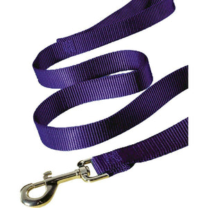 Single Thick Nylon Lead (Size 1 In X 6 Ft. Color Hot Purple)