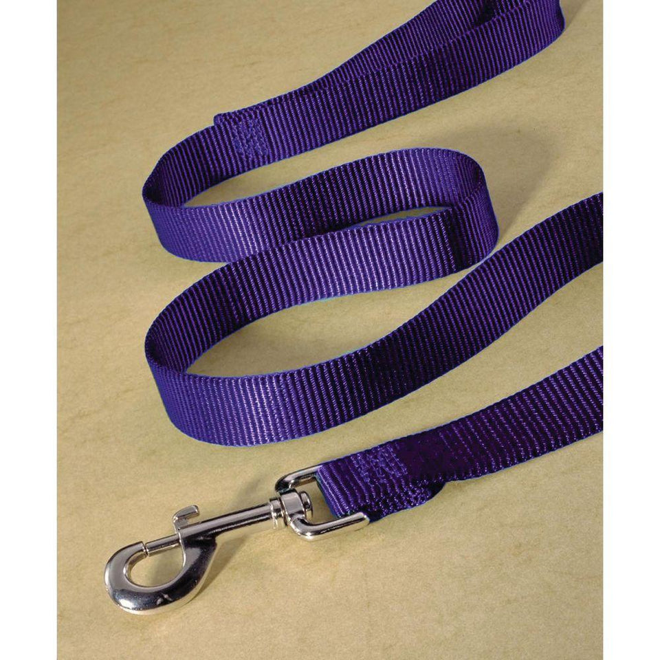 Single Thick Nylon Lead (Size 1 In X 4 Ft. Purple.)