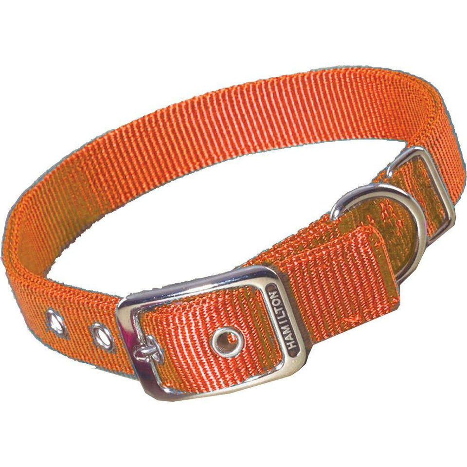 Double Thick Nylon Dog Collar (Size 1x20 In. Color Mango.)