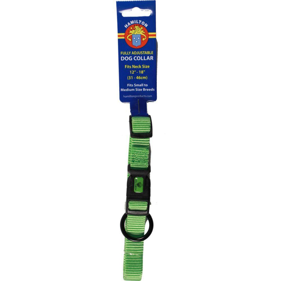 Adjustable Dog Collar (Size 5/8 X 12-18 In. Lime.)