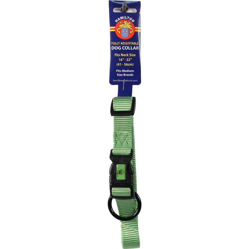 Adjustable Dog Collar (Size 3/4 X 16-22 In. Lime.)