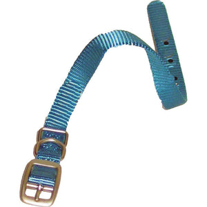 Single Thick Nylon Dog Collar (Size 3/8 X 12 In. Color Ocean.)