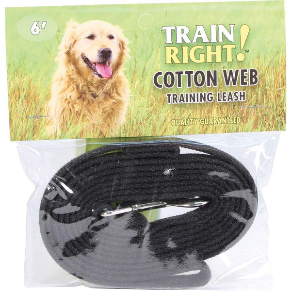 Train Right! Cotton Web Dog Training Leash 6 Ft Black