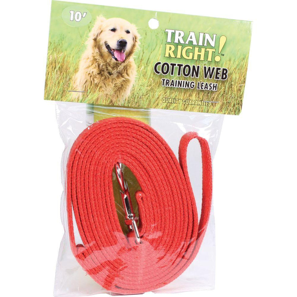 Train Right! Cotton Web Dog Training Leash 10' Red