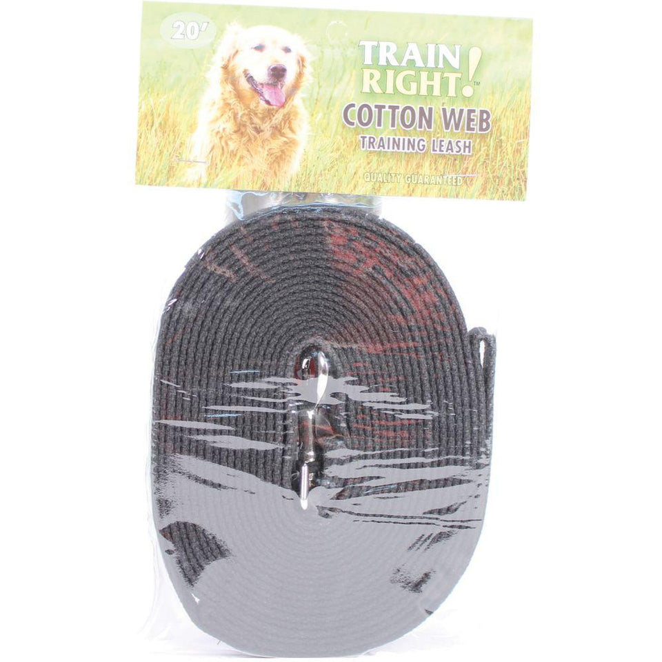 Train Right! Cotton Web Dog Training Leash 20'