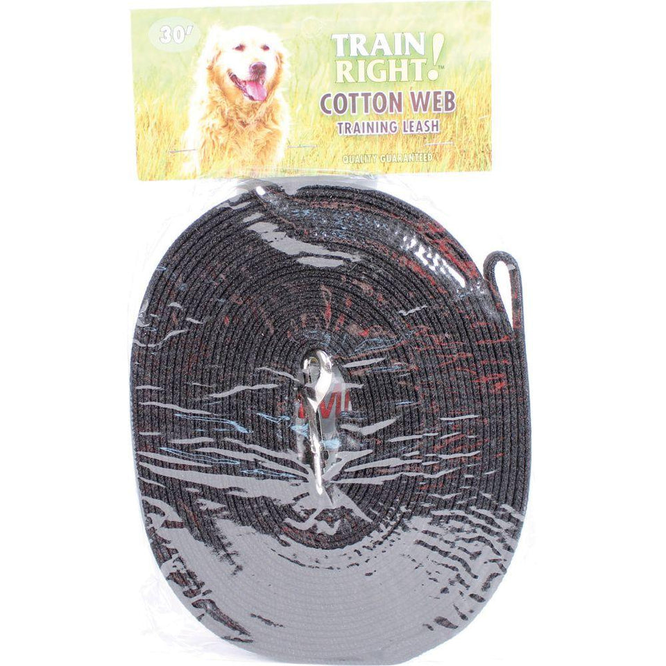 Train Right! Cotton Web Dog Training Leash 30'