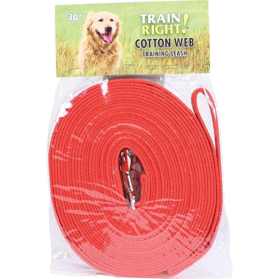 Train Right! Cotton Web Dog Training Leash 30' red