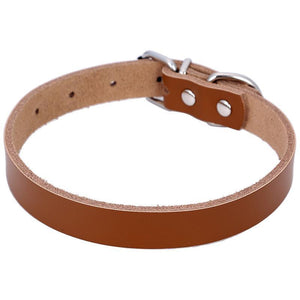 DOG IZ DOG collar Solid Real Leather Dog Collar Available in 5 Colors