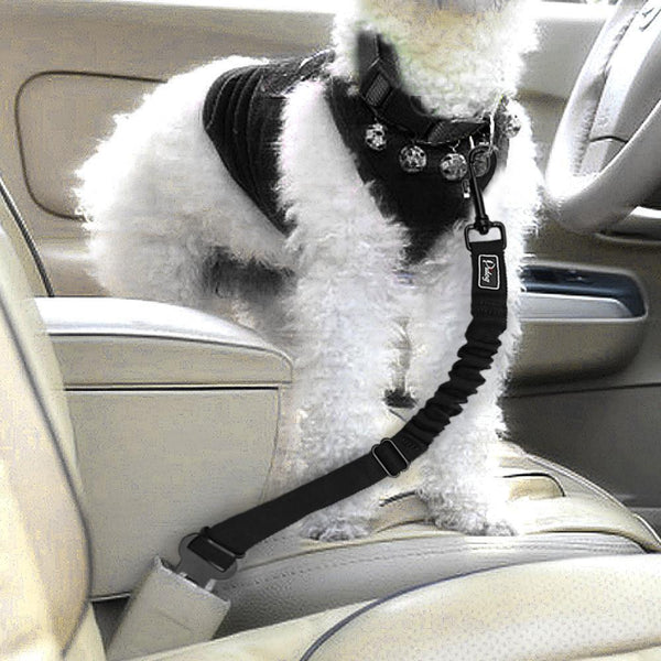 Adjustable Dog Seat Belt - with Elastic Bungee Leash