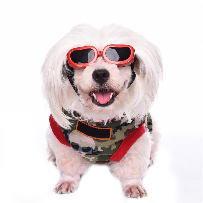 Protective Dog Sunglasses with UV Protection for Puppies and Small Dogs Black