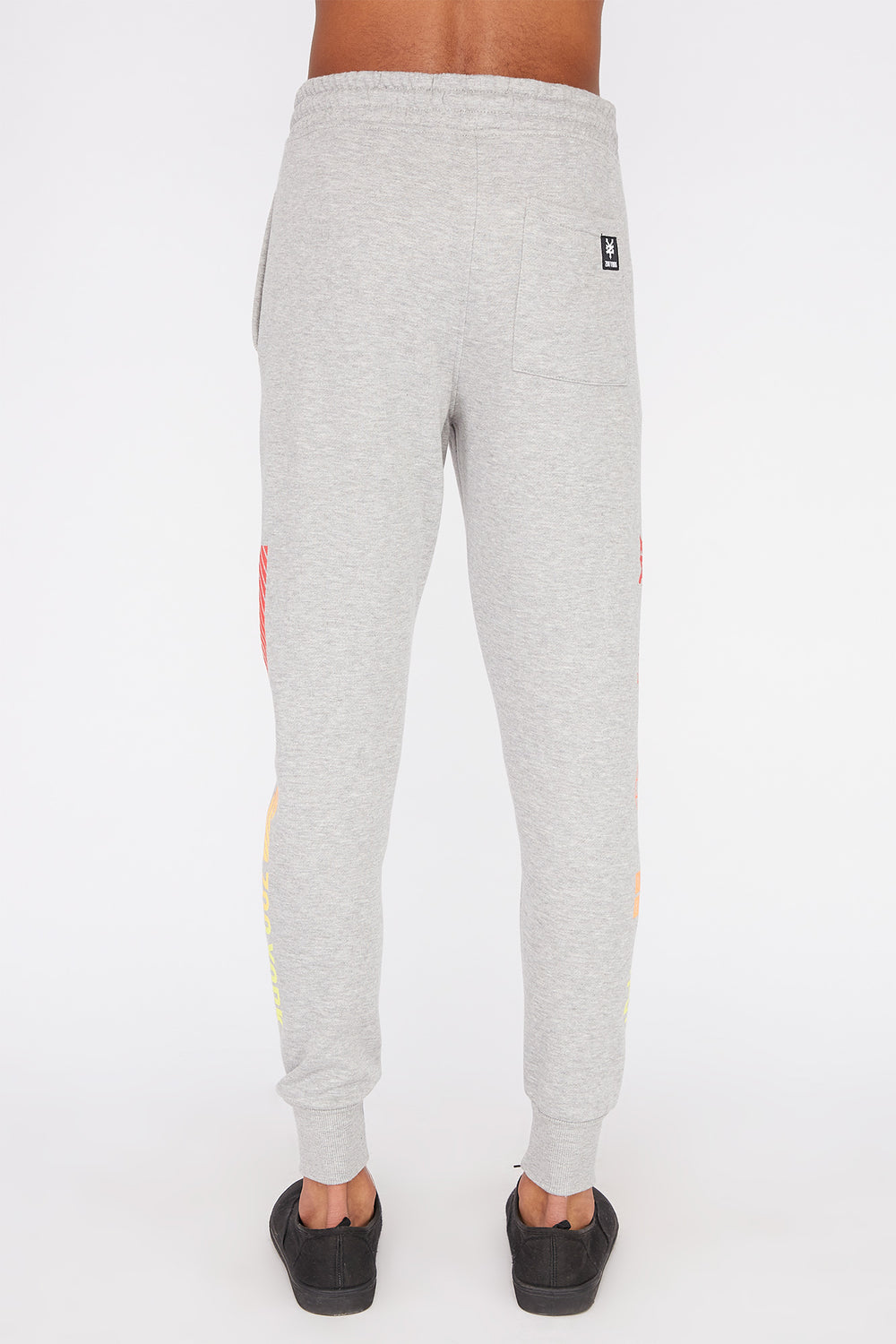 Jogger Logos Gradients Zoo York Homme Gris