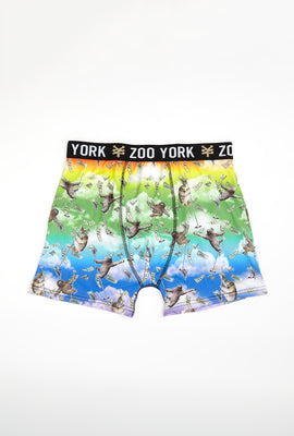 Zoo York Mens Sloth Rainbow Boxer Brief