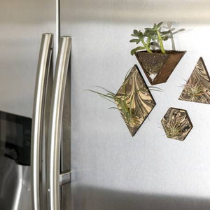 Magnetic Marbled Air Plant Holders from Savvie Studio