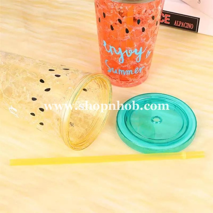 1PC Double-layered Creative Nontoxic Practical Portable Plastic Cups Cooling 450ml Fruits Cup Drinkware for Tea Milk Coffee - ShopnHob (3581491216464)